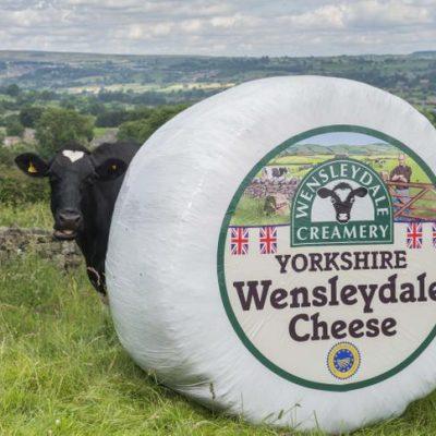 Wensleydale Cheese 1