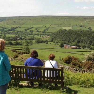 Farndale (bench)